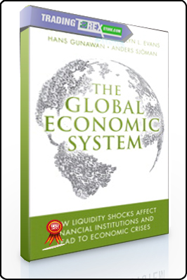 Ian Wallace – The Global Economic System