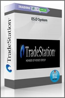ES.D System