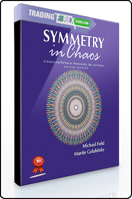 Michael Field, Martin Golubitsky – Symmetry in Chaos. A Search for Pattern in Mathematics. Art and Nature
