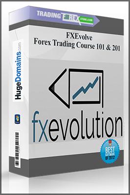 101 forex brokers