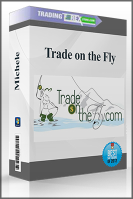 Michele – Trade on the Fly