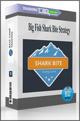 Big Fish Shark Bite Strategy