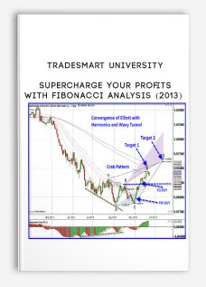 TradeSmart University – Supercharge Your Profits With Fibonacci Analysis (2013) [1 MP4]