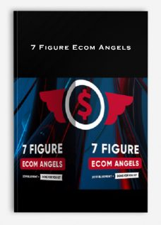 7 Figure Ecom Angels