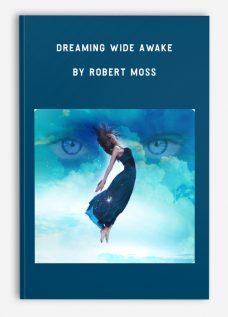 Dreaming Wide Awake by Robert Moss