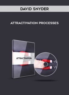Attractivation Processes by David Snyder