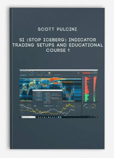 SI (STOP ICEBERG) Indicator Trading Setups and Educational Course 1 by Scott Pulcini